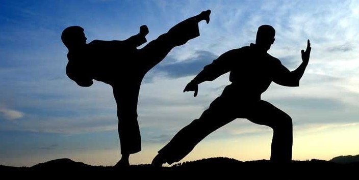 Why Martial Arts Bring The Best in You?